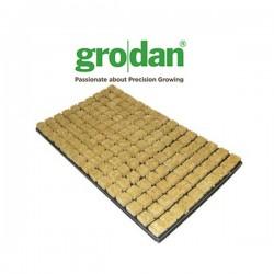 Plateau de 150 cubes LDR Grodan