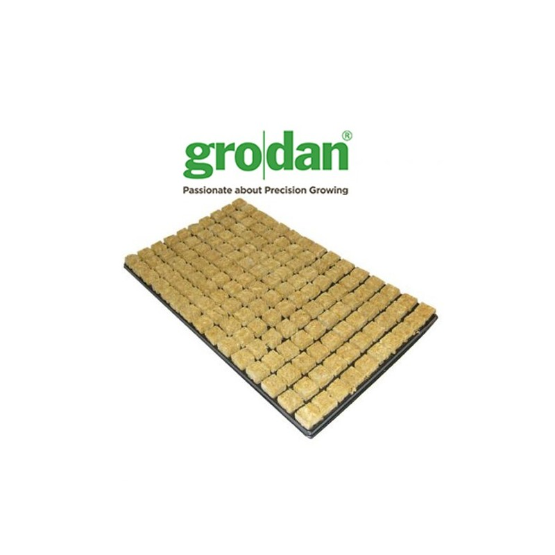 Plateau de 150 cubes LDR Grodan-Laine de roche- growstore.fr