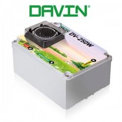Timer 1x250W Davin DV-250W