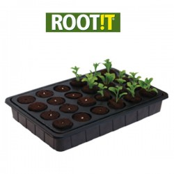 Plateau de 24 cubes Root It-Substrats de propagation- growstore.fr