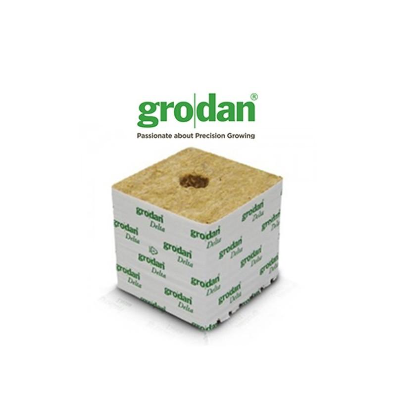 Cube LDR 15x15x13,5cm Grodan-Laine de roche- growstore.fr