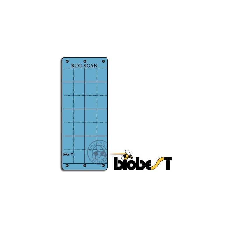 Panneaux Gluants x10 Biobest Bug-Scan Bleus-Accessoires culture- growstore.fr