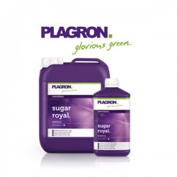 Plagron Sugar Royal 250ml-Exhausteurs & Rendement- growstore.fr