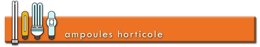 Ampoules horticoles pour la croissance et la floraison des plantes