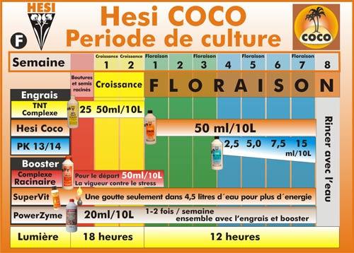 schema hesi coco